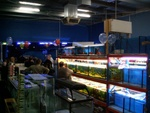 Cold freshwater fish racks and various tanks available.